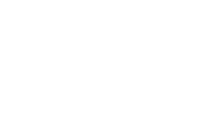 LIFE EFFECTIVE by Dr. Gäbler